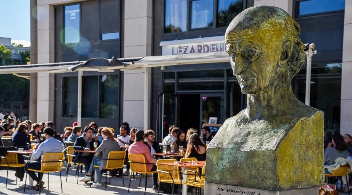 Lézardeur Brasseurs et Cuistots Montpellier Bar Restaurant