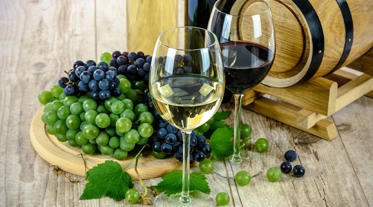 Un verre aux jardins Avignon dégustation vin jeudi vendredi